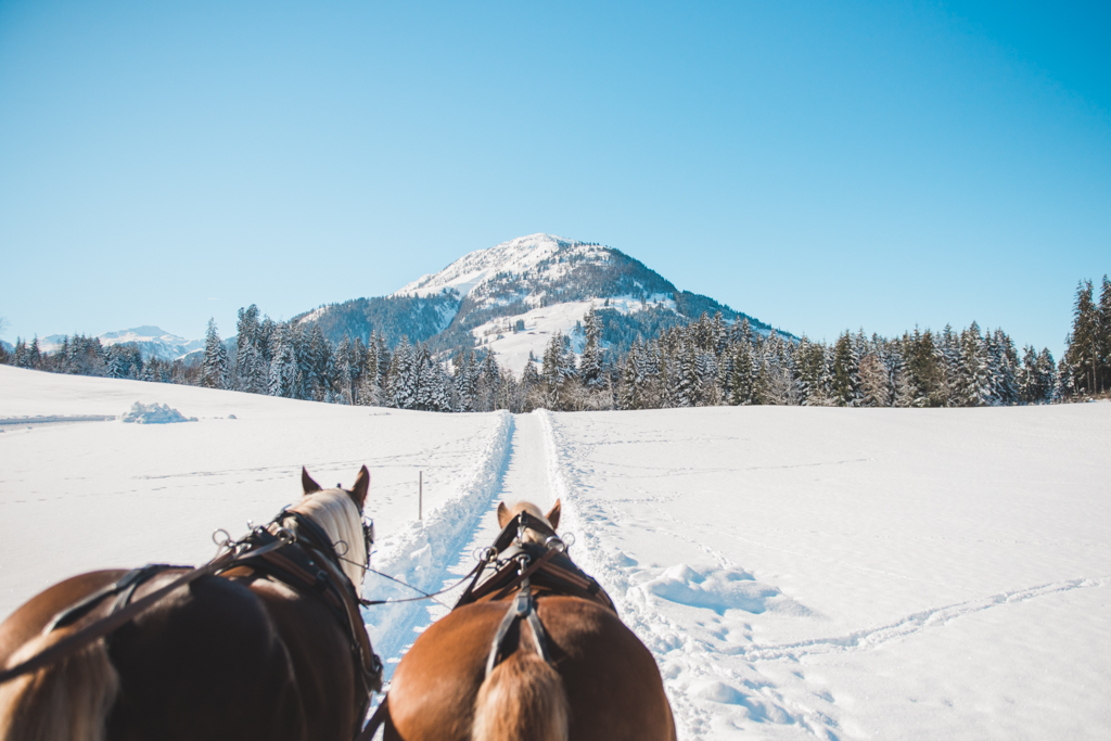 Sleigh ride in the snowy landscape of Austria on the morning of a destination winter wedding